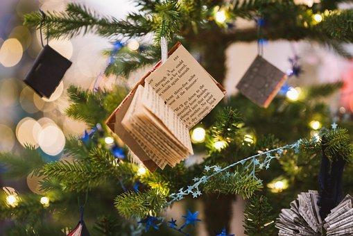 Branch, Celebrating, Christmas
