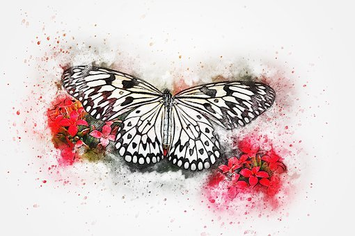 Butterfly, Animal, Insect, Art, Abstract