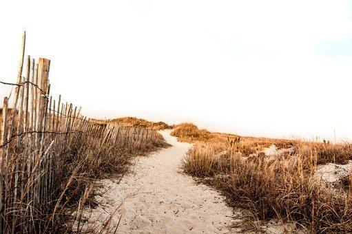 Beach, Sand, Path, Fence, Grass
